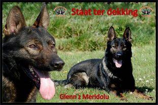 Glenn z Meridolu