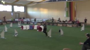 Best agility Caroline