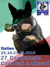 S.A.S. Campionato Nati e Allevati in Italia