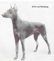 Rita vom Romberg