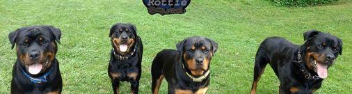(von der Smith) Rottie Squad Kennel