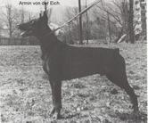 Armin von der Eich