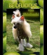Be Delicious Von Shinbashi