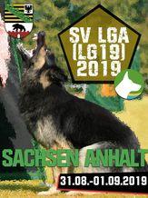 SV LGA (LG19) 2019 - IGP 3