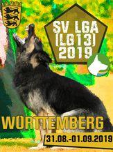 SV LGA (LG13) 2019 - IGP 3
