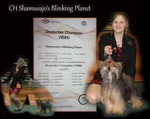 Shamusajo's Blinking Planet