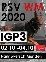 2020 RSV WM 2020 - RSVSchH III