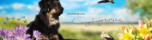 vom Langhagensee (FCI)