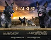E z Glaurung