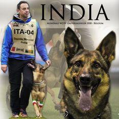 India (LOI 14/151796)