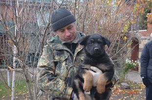 Yakudza aus Sursko-Litovsk