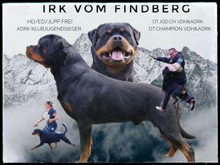 Irk vom Findberg