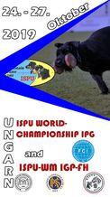 28. ISPU-WM IGP 2019 - IGP 3