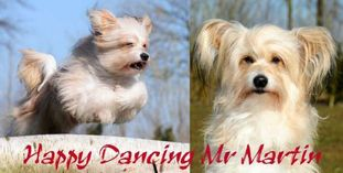 Happy Dancing Mr Martin
