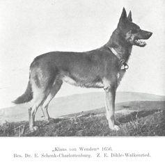 Klaus von Wenden
