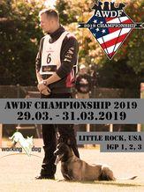 AWDF Championship