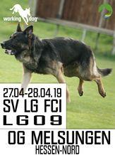 SV LG-FCI (LG09) 2019 - IGP 3