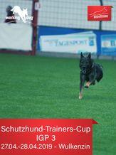 RSV2000 Schutzhund-Trainers-Cup 2019 - IGP 3
