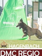 DMC Regio-Prüfung Hagenbach