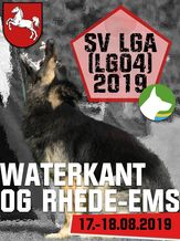 SV LGA (LG04) 2019 - IGP 3