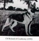 Roland of Coulmony