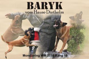 Baryk vom Hause Diethelm