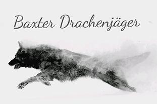 Baxter Drachenjäger