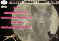 Mango dit Messi des Crocs d'Eben