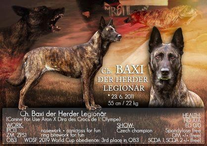Baxi der Herder Legionär