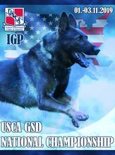 USCA GSD IGP National Championship 2019 - IGP 3