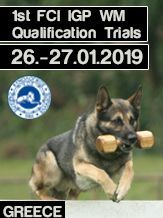 K.O.E. IPO Competitions 1st FCI IGP WM Qualification Trials 2019 - iIGP 3