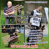 Seminar/Workshop