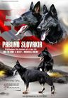 PABONO SLOVAKIA