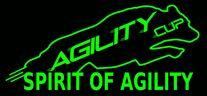 Avallon Agility Cup 2019