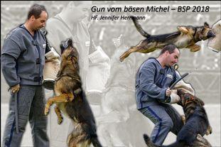 Gun vom bösen Michel