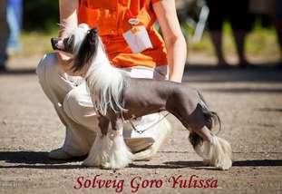 Solveig Goro Yulissa