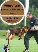 SVÖ-WUSV-WM Endqualifikation 2019 - IGP 3