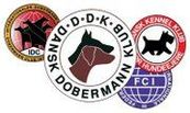 Dansk Dobermann Klub IPO