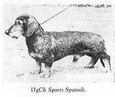 Sports Sputnik