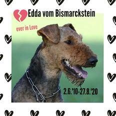 Edda vom Bismarckstein