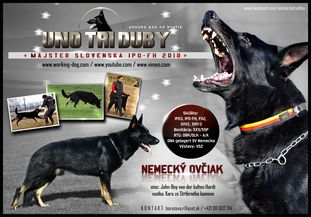 Uno Tri Duby