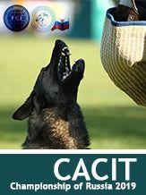 CACIT Championship of Russia 2019 - IGP 3