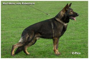 Karl-Heinz vom Rabenturm