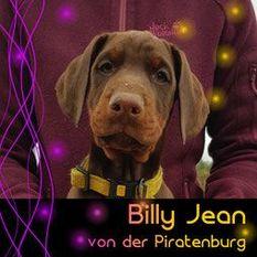 Billy Jean von der Piratenburg