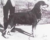 Erno von Wellesweiler