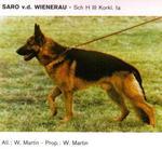 Saro von der Wienerau