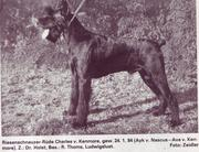 Charles von Kenmore