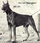 Ero von Hagenstern