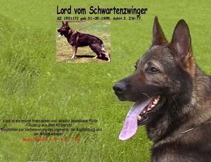Lord vom Schwartenzwinger