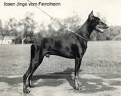 Helmuth van Ferrolheim